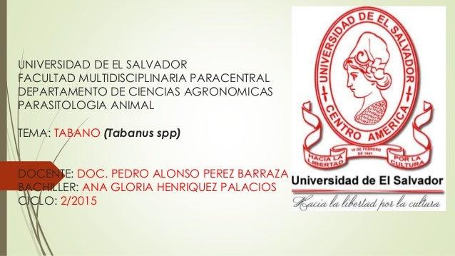 UNIVERSIDAD DE EL SALVADOR FACULTAD MULTIDISCIPLINARIA PARACENTRAL DEPARTAMENTO DE CIENCIAS AGRONOMICAS PARASITOLOGIA ANIM...
