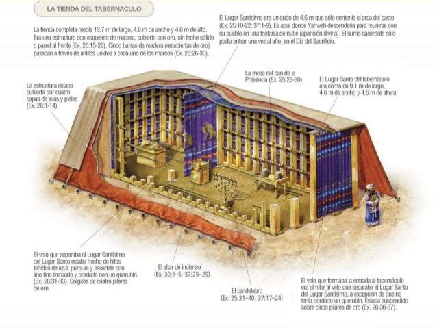 El tabernáculo y sus utensilios (sus  - Monografias.com
