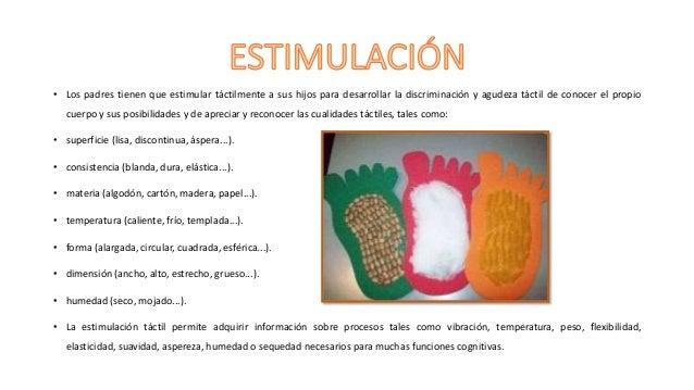 EVOLUCIÓN Y ESTIMULACIÓN DEL TACTO