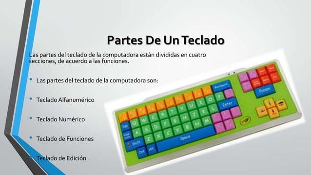 Partes De Un Teclado Las partes del teclado de la computadora están divididas en cuatro secciones, de acuerdo a las funcio...