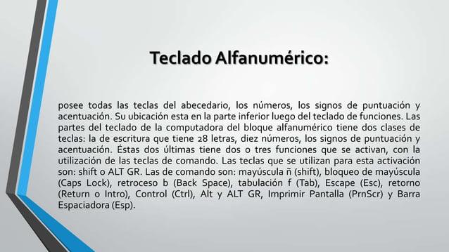 Teclado Alfanumérico: posee todas las teclas del abecedario, los números, los signos de puntuación y acentuación. Su ubica...