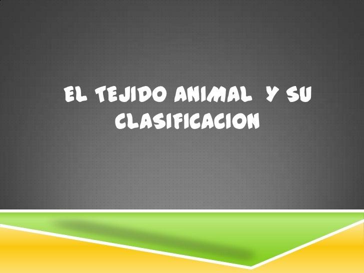 EL Tejido animal  Y SU CLASIFICACION <br />