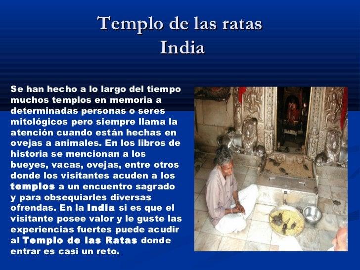 Templo de las ratas                        IndiaSe han hecho a lo largo del tiempomuchos templos en memoria adeterminadas ...