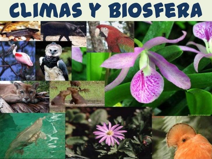 Climas y biosfera