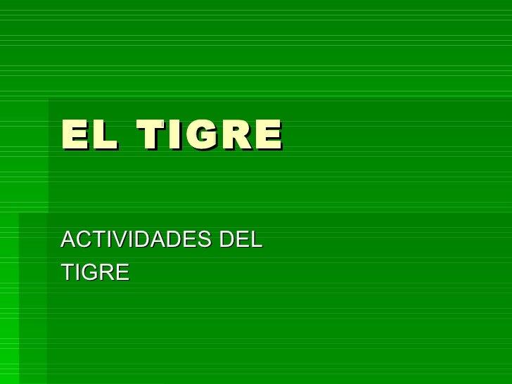 EL TIGREACTIVIDADES DELTIGRE
