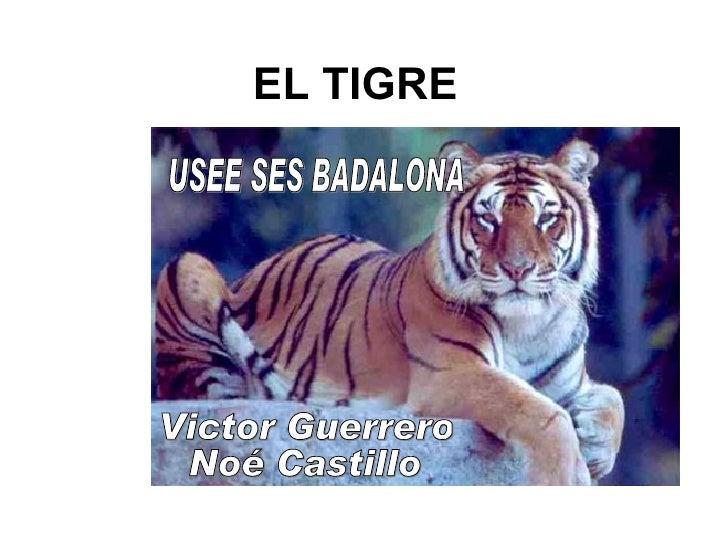 EL TIGRE USEE SES BADALONA Victor Guerrero Noé Castillo