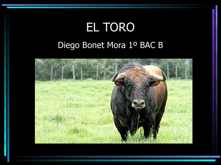 EL TORO Diego Bonet Mora 1º BAC B