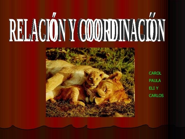 RELACIÓN Y COORDINACIÓN CAROL PAULA  ELI Y  CARLOS