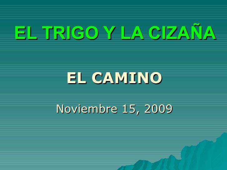 EL TRIGO Y LA CIZAÑA EL CAMINO Noviembre 15, 2009