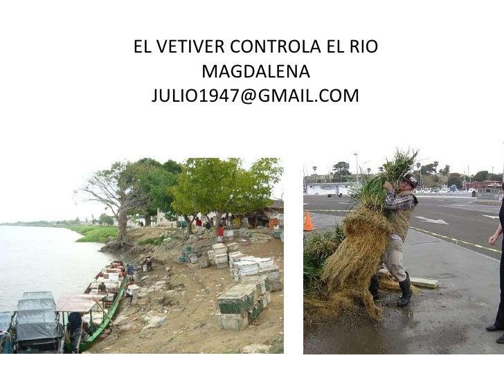 EL VETIVER CONTROLA EL RIO        MAGDALENA  JULIO1947@GMAIL.COM