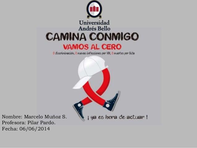 Nombre: Marcelo Muñoz S. Profesora: Pilar Pardo. Fecha: 06/06/2014