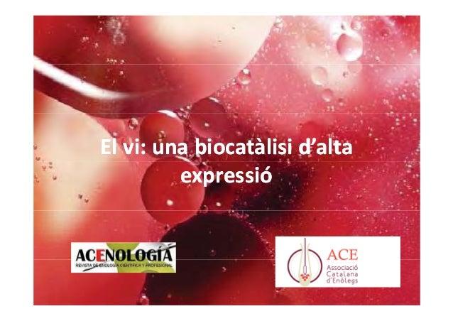 El vi: una biocatàlisi d'alta expressió