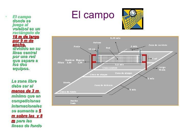 •   El campo    donde se                      El campo    juega al    voleibol es un    rectángulo de    18 m de largo    ...