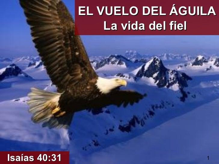 EL VUELO DEL ÁGUILA                   La vida del fielIsaías 40:31                     1