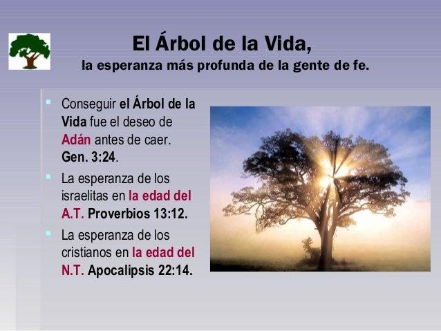 Significado del arbol de la vida las principales for Significado de la palabra arbol