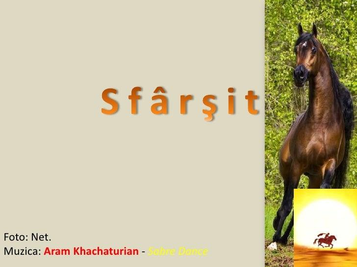 S f â r ş i t<br />Foto: Net.<br />Muzica: Aram Khachaturian - Sabre Dance<br />(V.M.)<br />