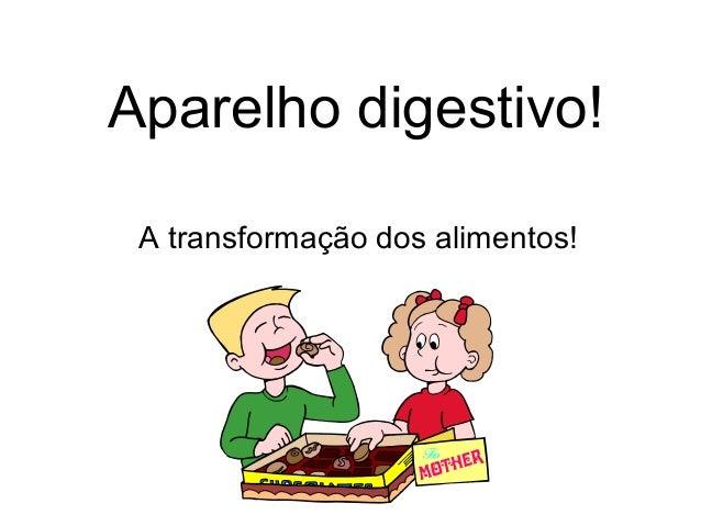 Aparelho digestivo! A transformação dos alimentos!