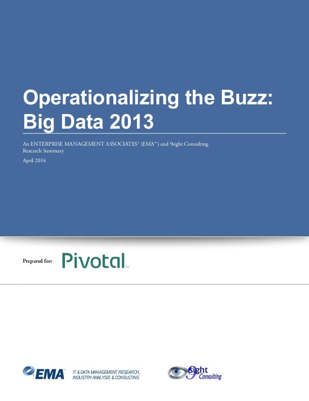 Operationalizing the Buzz: Big Data 2013 An ENTERPRISE MANAGEMENT ASSOCIATES® (EMA™) and 9sight Consulting Research Summar...