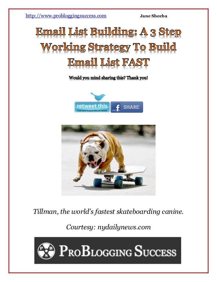 http://www.probloggingsuccess.com     Jane Sheeba   Tillman, the world's fastest skateboarding canine.                Cour...
