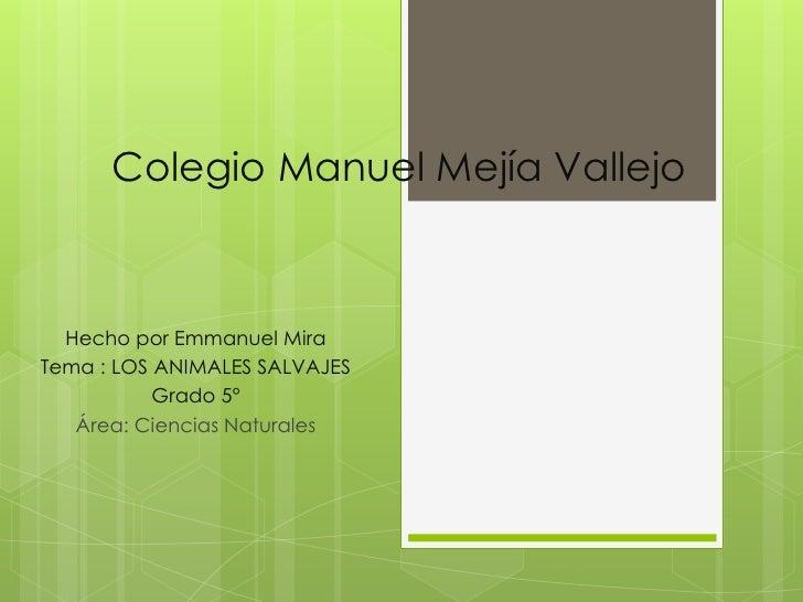 Colegio Manuel Mejía Vallejo  Hecho por Emmanuel MiraTema : LOS ANIMALES SALVAJES           Grado 5°   Área: Ciencias Natu...