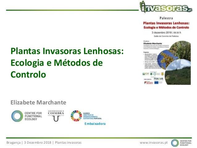 Bragança | 3 Dezembro 2018 | Plantas invasoras www.invasoras.pt Plantas Invasoras Lenhosas: Ecologia e Métodos de Controlo...