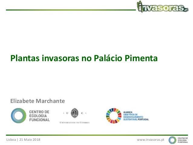 Lisboa | 21 Maio 2018 www.invasoras.pt Plantas invasoras no Palácio Pimenta Elizabete Marchante