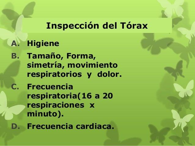 Inspección del Tórax A. Higiene B. Tamaño, Forma, simetría, movimiento respiratorios y dolor. C. Frecuencia respiratoria(1...