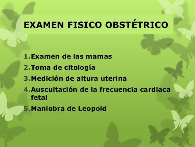 EXAMEN FISICO OBSTÉTRICO 1.Examen de las mamas 2.Toma de citología 3.Medición de altura uterina 4.Auscultación de la frecu...