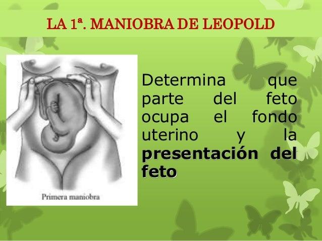 Explora lateralmente al útero y determina el dorso y las partes fetales. Con esto determinamos la posición izquierda o der...