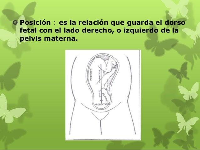 Situación : relación del eje longitudinal del feto con el de la madre, lo anterior se determina por la palpación metódica ...