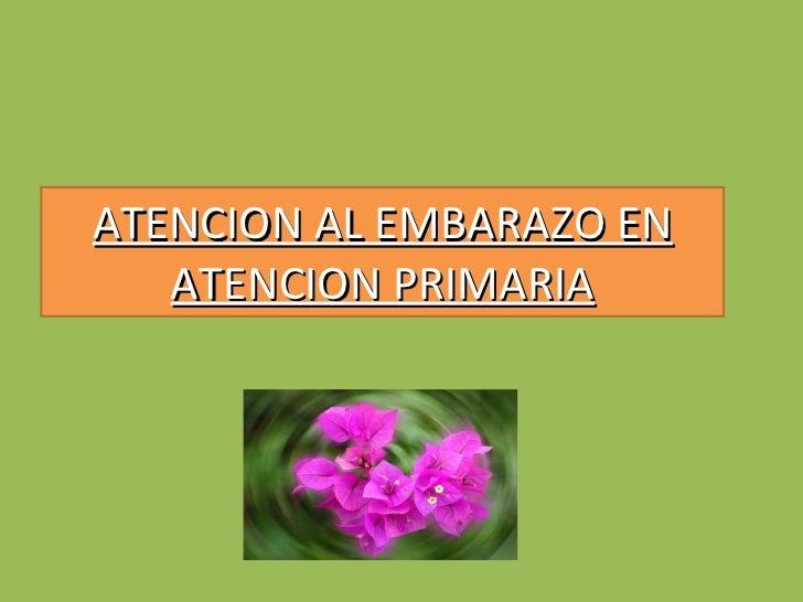 ATENCION AL EMBARAZO EN ATENCION PRIMARIA