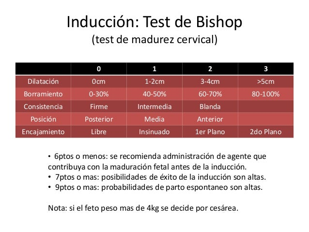 Embarazo cronol gicamente prolongado for Test trabajo ideal