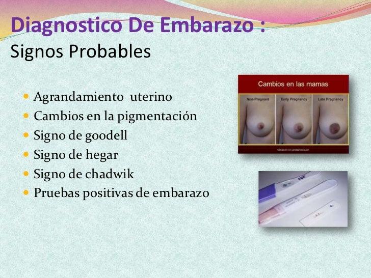 Fisiologia Del Embarazo