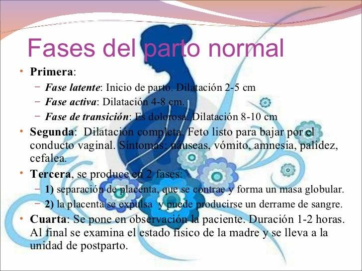 Best Cuarta Semana De Embarazo Sintomas Ideas - Casas: Ideas ...