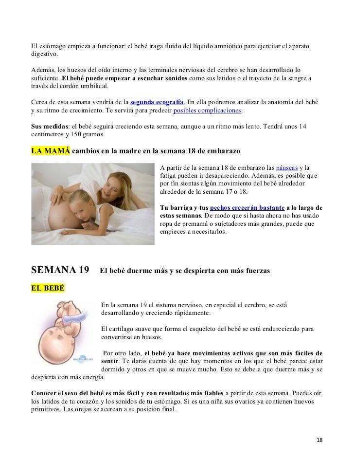 Excelente Anatomía Del Embarazo Semana A Semana Ilustración ...