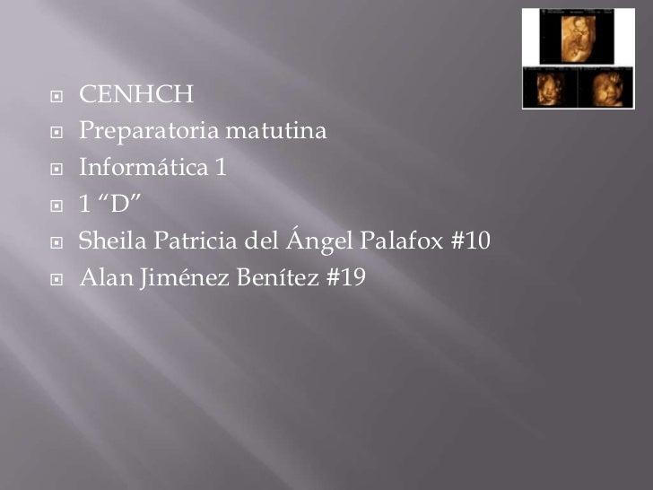 "   CENHCH   Preparatoria matutina   Informática 1   1 ""D""   Sheila Patricia del Ángel Palafox #10   Alan Jiménez Ben..."