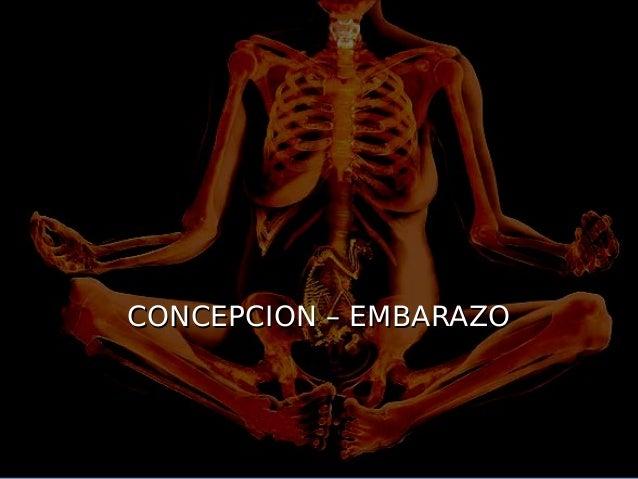 CONCEPCION – EMBARAZO