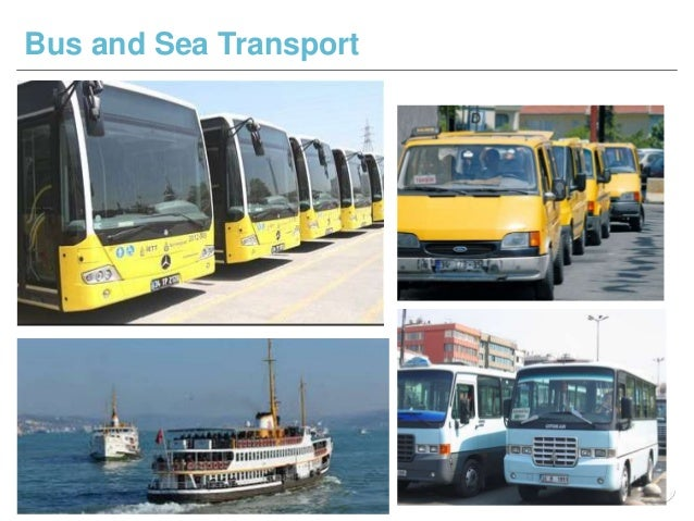 Bus and Sea Transport
