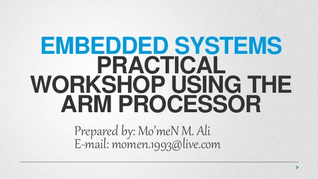 Embedded System Practical Workshop using the ARM Processor