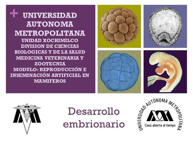 + UNIVERSIDAD   AUTONOMA METROPOLITANA    UNIDAD XOCHIMILCO    DIVISION DE CIENCIAS  BIOLOGICAS Y DE LA SALUD  MEDICINA VE...