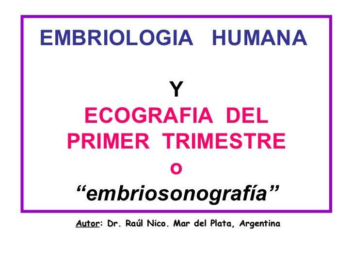 """EMBRIOLOGIA HUMANA          Y   ECOGRAFIA DEL PRIMER TRIMESTRE          o  """"embriosonografía""""  Autor: Dr. Raúl Nico. Mar d..."""