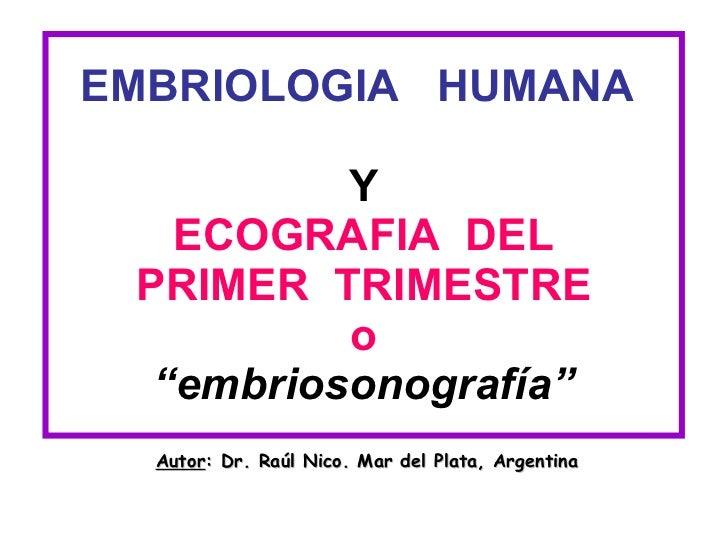 """EMBRIOLOGIA  HUMANA  Y ECOGRAFIA  DEL PRIMER  TRIMESTRE o """"embriosonografía"""" Autor : Dr. Raúl Nico. Mar del Plata, Argentina"""