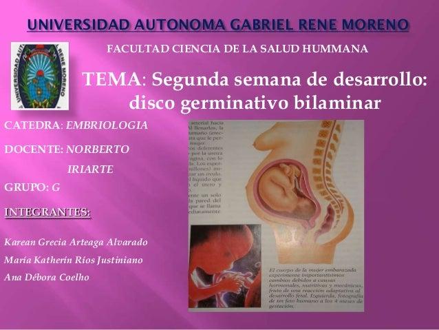 UNIVERSIDAD AUTONOMA GABRIEL RENE MORENO                      FACULTAD CIENCIA DE LA SALUD HUMMANA                TEMA: Se...
