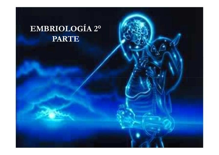 EMBRIOLOGÍA 2°   PARTE