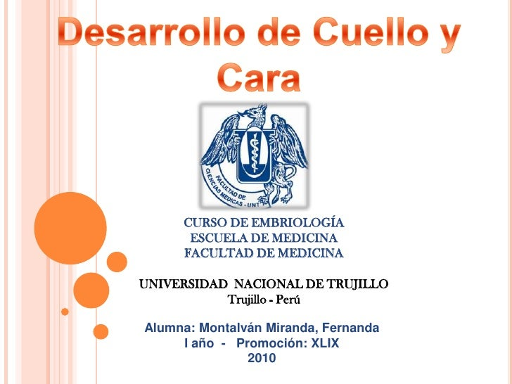 Desarrollo de Cuello y Cara<br />CURSO DE EMBRIOLOGÍA<br />ESCUELA DE MEDICINA<br />FACULTAD DE MEDICINA<br />UNIVERSIDAD ...