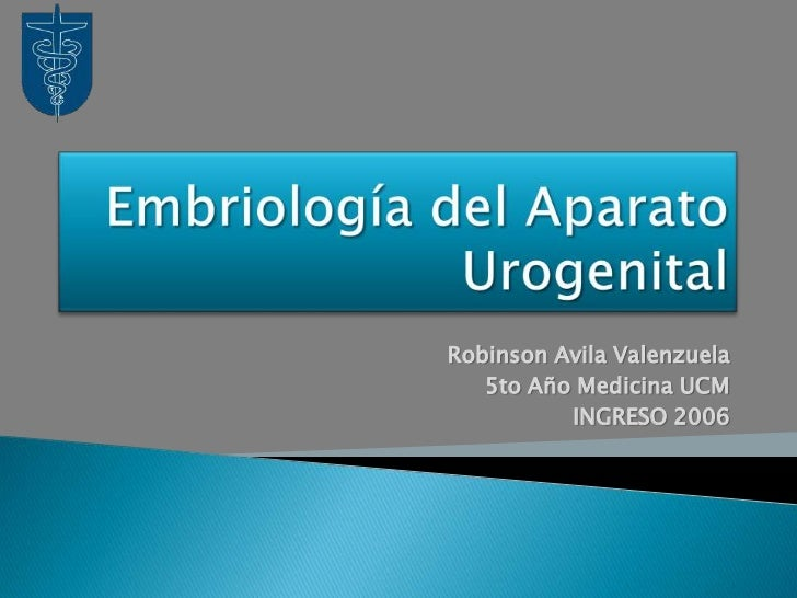 Embriología del Aparato Urogenital<br />Robinson Avila Valenzuela<br />5to Año Medicina UCM<br />INGRESO 2006<br />