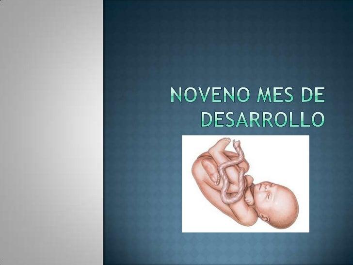 En esta etapa aparece el reflejo de succión y también se producen los primeros movimientos del bebé, aún imperceptibles pa...