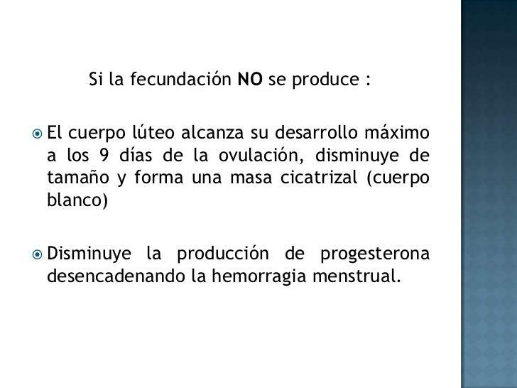 Si la fecundación NO se produce :<br />El cuerpo lúteo alcanza su desarrollo máximo a los 9 días de la ovulación, disminuy...