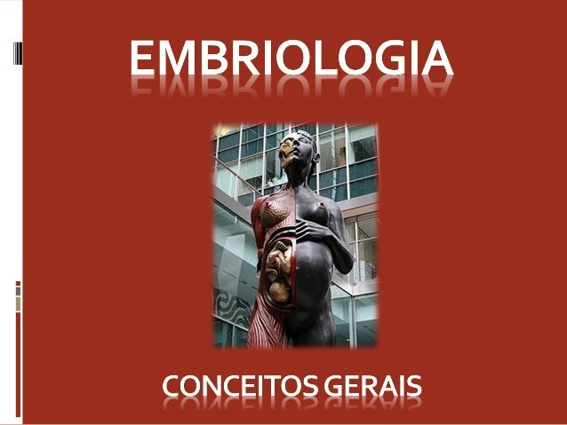 O que a Embriologia estuda?  É a ciência que estuda o desenvolvimento  ontogenético dos seres vivos.  Desenvolvimento é ...