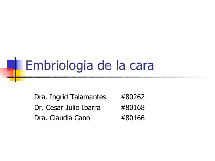 Embriologia de la cara Dra. Ingrid Talamantes  #80262 Dr. Cesar Julio Ibarra  #80168 Dra. Claudia Cano  #80166